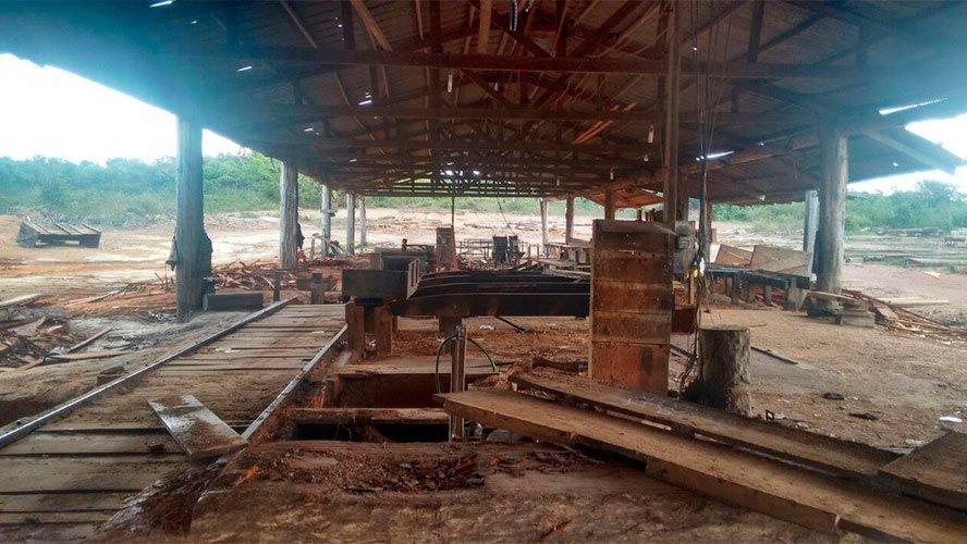 Polícia Federal deflagra operação em combate à extração ilegal de madeira