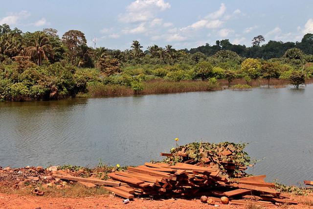 Transamazônica, 45 anos | Presença indígena é a tábua de salvação da floresta
